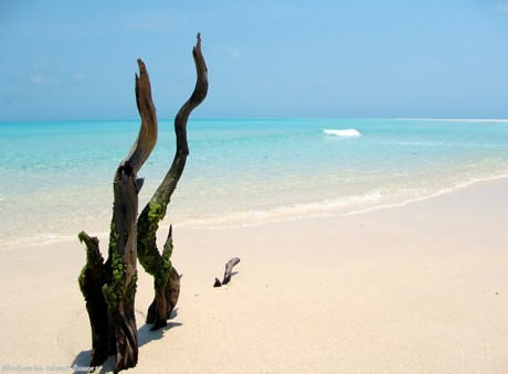beaches-mozambique-medjumbe-island-deserted-beach-rani-resorts-b
