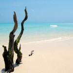 Preparando la próxima aventura: Mozambique.