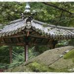 Qué ver en Seúl en un día: Changdeokgung, Jardín secreto y Bukchon Hanok Village (Día 1)