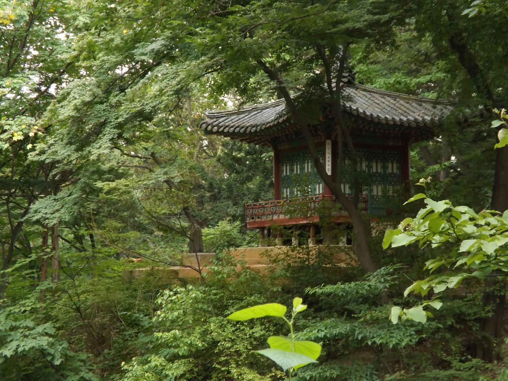 jardinsecreto3