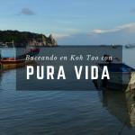 Buceando en Koh Tao (Tailandia) con Pura Vida